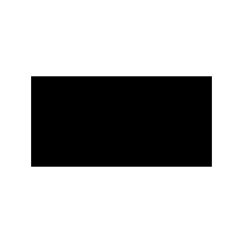 EQS Integrity Line reference logo Puma | integrityline.com